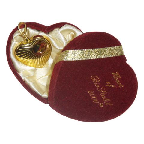 Magnetkette - Magnetkette - Magnetanhänger - Stress - Spannung - Körper - 12000 Gaussndant-biostabil-therapeutic-magnet-jewelry-12000-Gauss-gold-silver